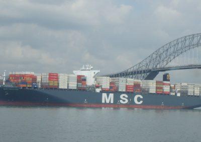 MSC Faustina